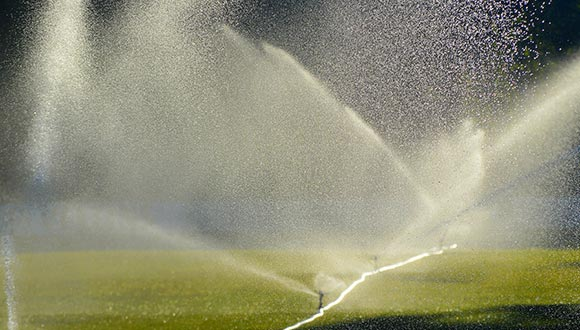 Landscape irrigation system inspection services from Exactual Inspection Services